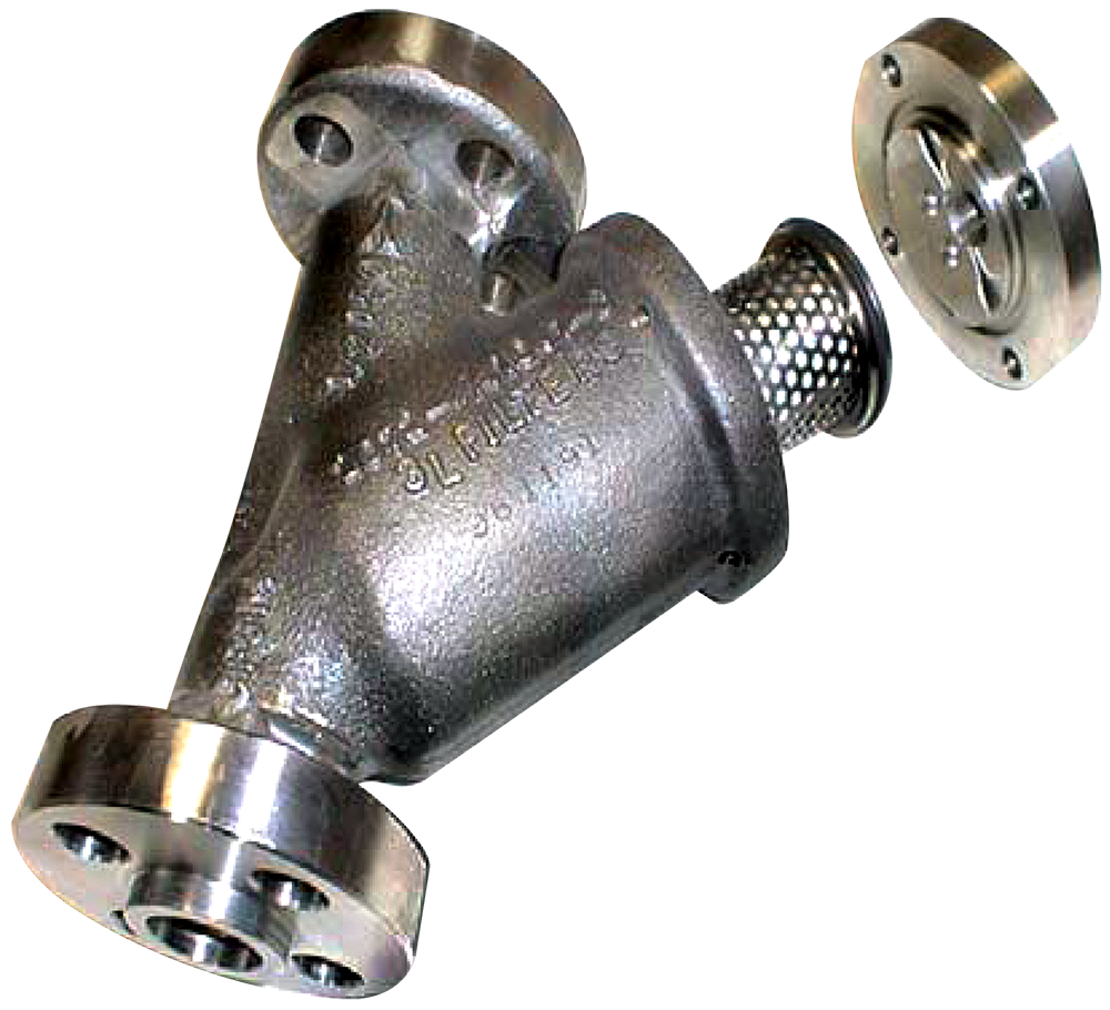 Strainers For Nuclear Applications